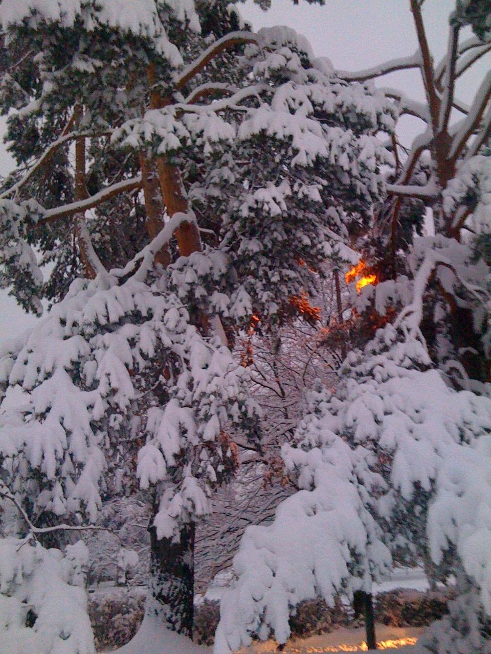 Centre œcumenique sous la neige (2010)