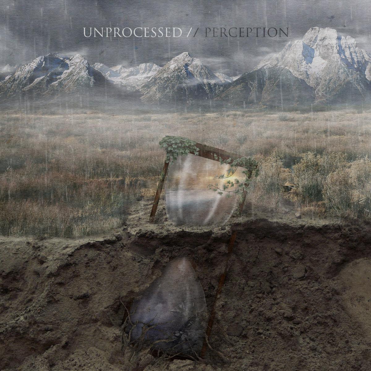 Unprocessed: Perception