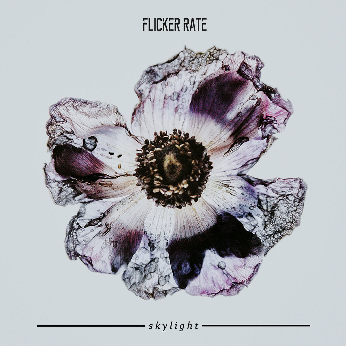 Flicker Rate: Skylight EP