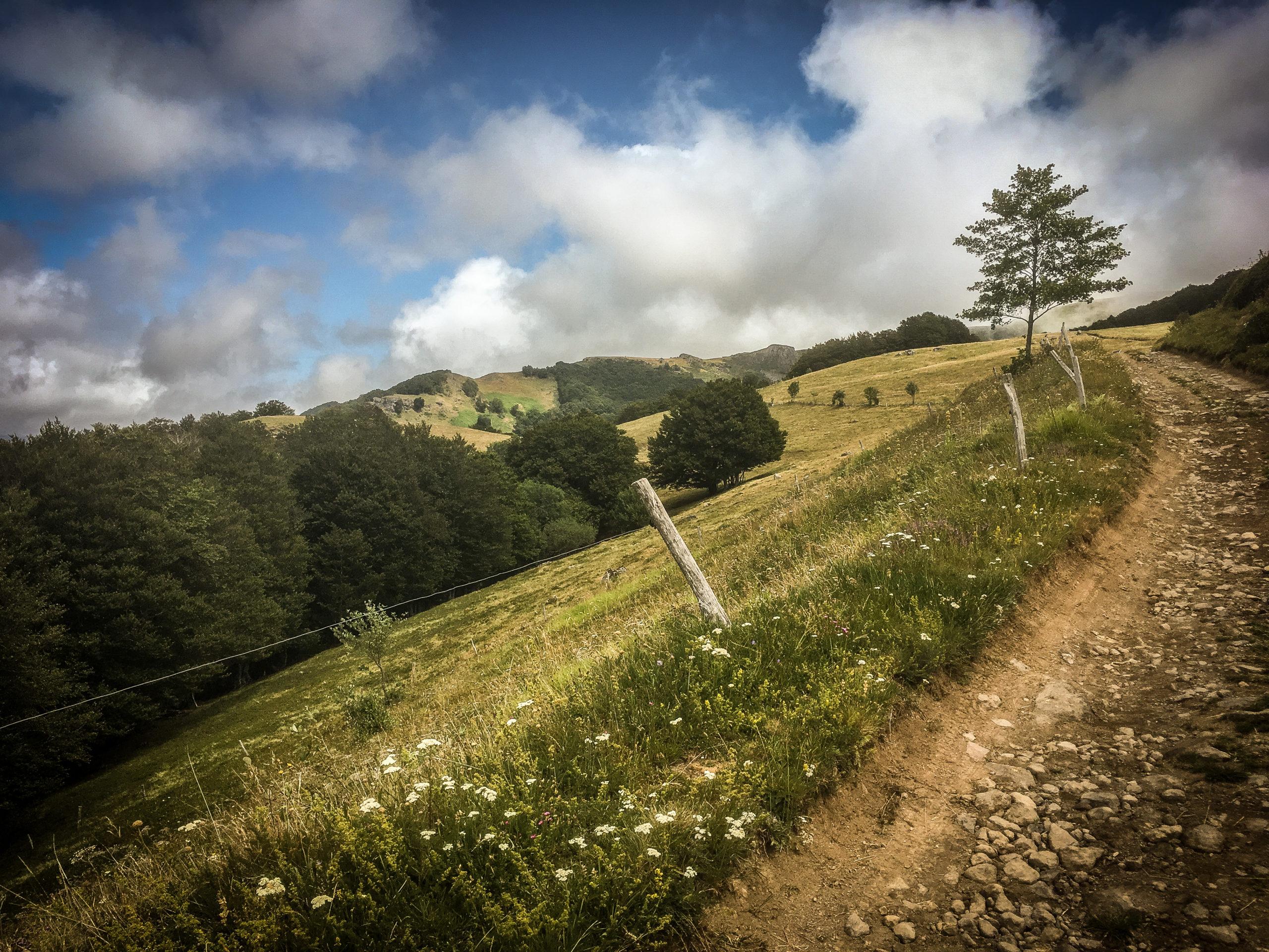 Pause en Auvergne