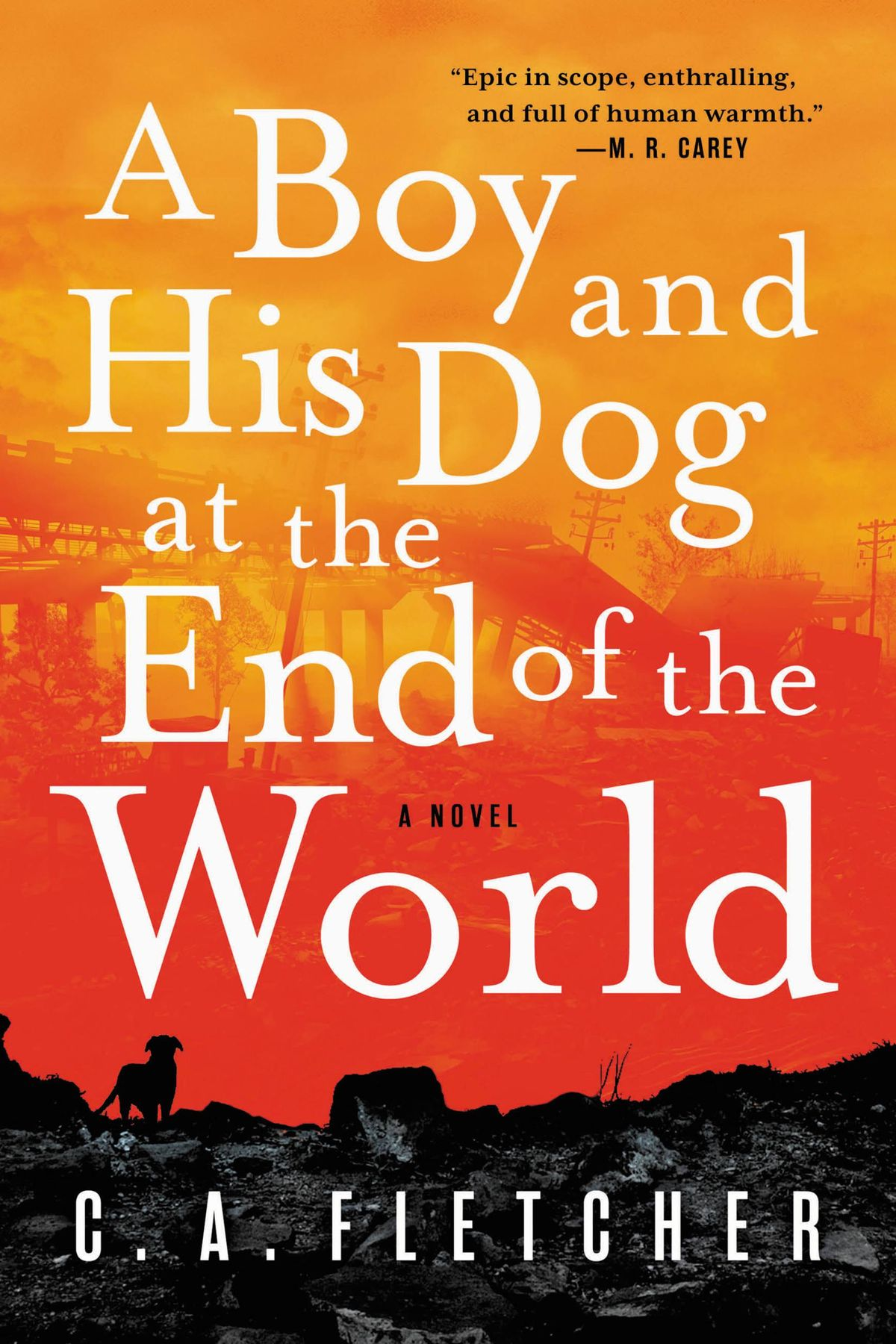 « A Boy and His Dog at the End of the World », de C. A. Fletcher